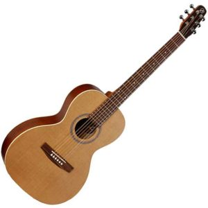 seagull coastline grand guitare acoustique